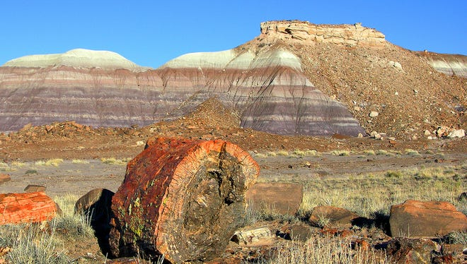 The main road running through Petrified Forest National Park, Ariz., shows off a stunning accumulation of petrified wood, and offers panoramic views of the Painted Desert.