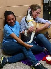 Michigan Humane Society staffers Autumn Kendricks, left, and Marcelena Mace with Annette. The stray from Hamilton County was the 10,000 dog transported earlier this month by GoNorth Animal Transport.