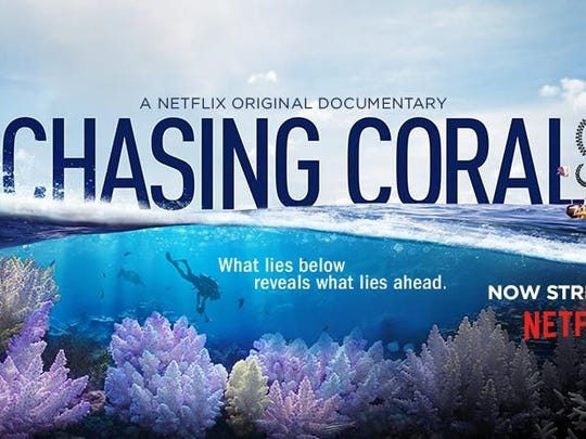 """Chasing Coral"" taps into the collective will and wisdom"