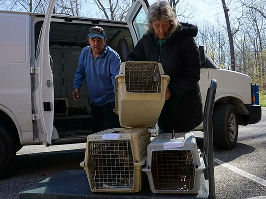 Jack Mills and Wendy Ross from The Humane Society of Somerset County unload cats at the Spay Spa and Neuter Nook in Davidsonville, Maryland.