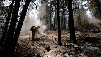 In this June 9, 2014 photo, a firefighter works to extinguish hotspots to secure the fire line on the east flank of the Two Bulls fire outside Bend, Ore. The fire was 25 percent contained on Monday after burning about 10 square miles.
