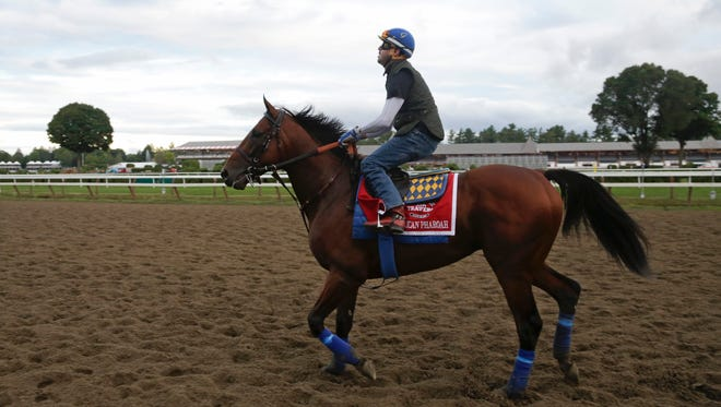 Triple Crown winner American Pharoah, with exercise rider George Alvarez up, works out at Saratoga Race Course on Thursday in Saratoga Springs.