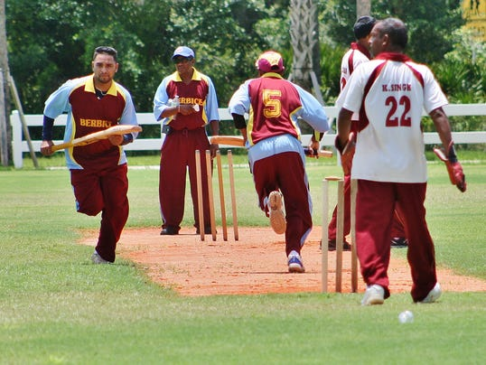 Cricket 2.JPG