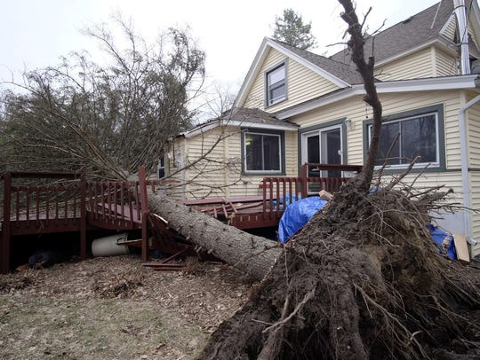 A house in Williamston was damaged when this tree fell
