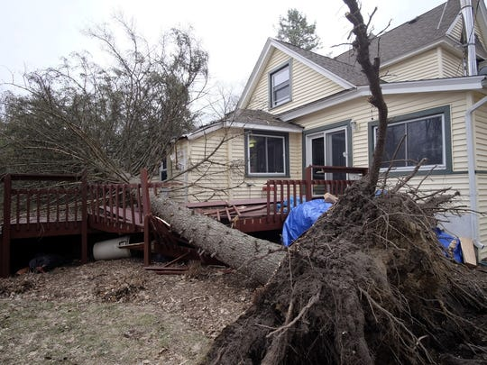 A house in Williamston was damaged when this tree fell on the roof then slid onto the deck, on March 8, 2017.