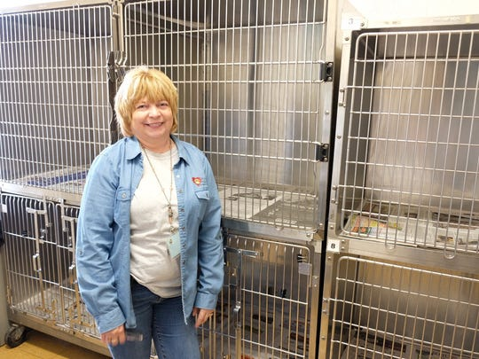 Animals Find New Homes During Empty The Shelters