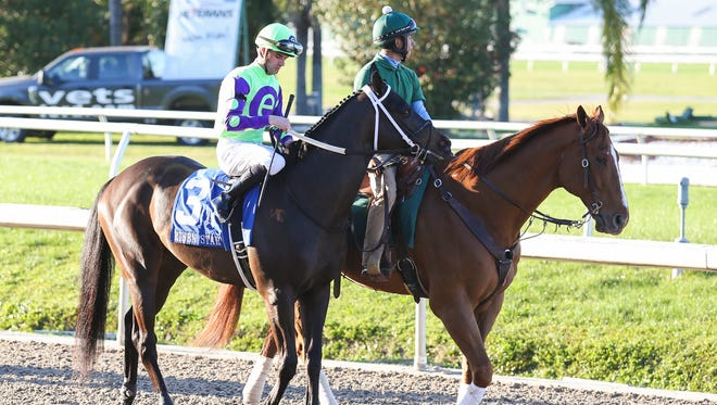 Local Hero #3, ridden by Florent Geroux,  Risen Star Stakes race on Risen Star Stakes Day at Fair Grounds Race Course on February 25, 2017 in New Orleans, Louisiana.