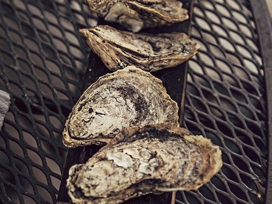 Oyster grilled on a bourbon barrel stave.