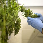 The state of Colorado has approved a list of pesticides that are acceptable to grow pot, but it's far from complete and leaves out several pesticides that are commonly used on both food and tobacco.