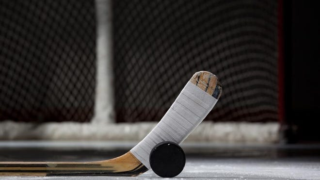 Hockey Puck, Stick, and Net (landscape)
