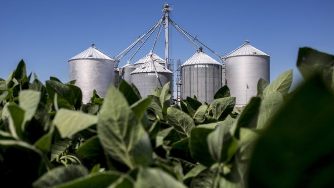 Nominations sought for WI Soybean Board.