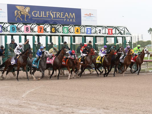 In a photo provided by Gulfstream Park, Nyguist (4), with jockey Mario Gutierrez, and the other horses leave the starting gate in the Florida Derby horse race Saturday, April 2, 2016, at Gulfstream Park in Hallandale Beach, Fla. Nyguist won the race. (Coglianese Photos/Gulfstream Park via AP)