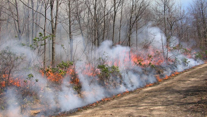 The Pennsylvania Game Commission and other agencies use controlled burns to improve habitat for wild game.