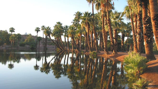 tr-papago1011 -- 10/10/06 -- Ponds in Papago Park, such as this one, have been the focus of a Tempe and Phoenix environmental plan designed to rehabilitate shores and remove overgrown brush.  photo by Ty Young / The Arizona Republic  (4/25/07 Phoenix, Tempe and Scottsdale share ownership of Papago Park, and the cities have embarked on an effort to devise a new master plan for the recreation area)