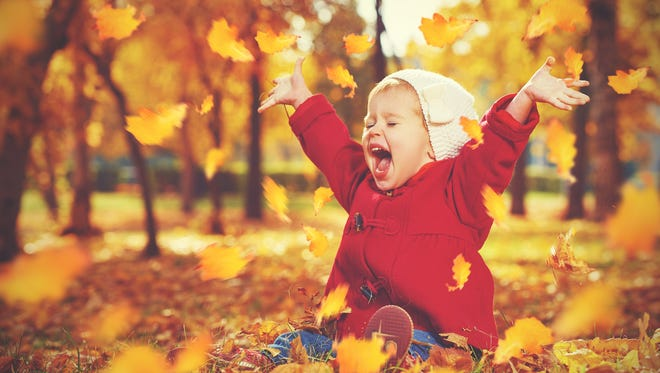 Fall festivals are among this weekend's family fun.