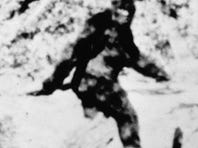 Bigfoot: If it exists, here's where to find it