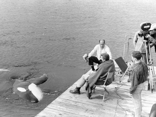 "Namu the killer whale swims next to actor Robert Lansing (seated) and a film crew shooting the movie ""Namu, the Killer Whale"" in 1966. Most of Namu's scenes were filmed in a cove off South Kitsap."