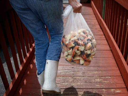Pat Kirk carries a bag of stone crab claws to the Old Marco Lodge Crab House in this 2016 file photo at Kirk Fish Company in Goodland. W