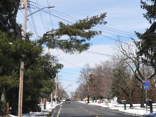 Downed tree limbs in Vineland following Wednesday's