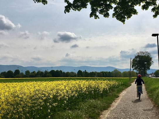Peaceful countryside riding from Mannheim to Schwetzingen.