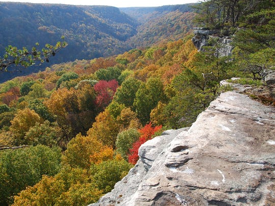 The Big Creek Rim in the Savage Gulf State Natural Area is one of the places in Tennessee that Mack Prichard fought to conserve.