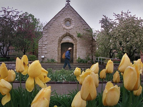 Tulips and flowering crab trees provide a picturesque