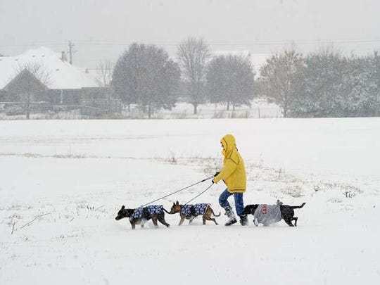 A woman and dogs were taking a stroll Friday in a field near Maple Grove Elementary School on Whiteland Road.