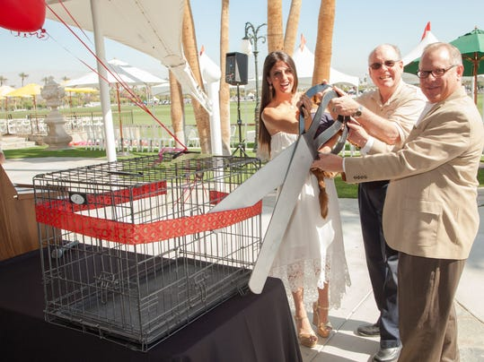 Bianca Rae Foundation.jpg