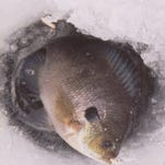 Engberg: Ice fishing is fast approaching