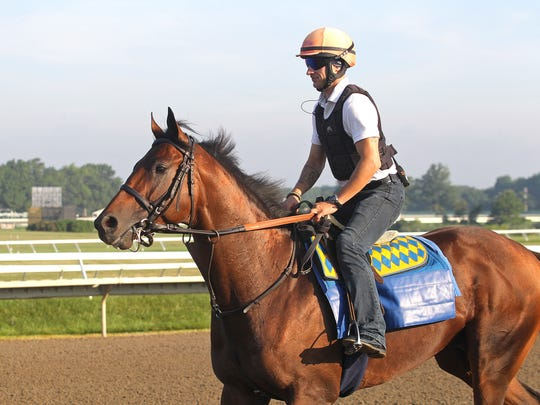 American Freedom will be trying to give Hall of Fame trainer Bob Baffert his ninth betfair.com Haskell Invitational winner