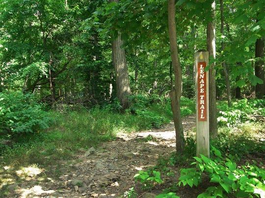 The Lenape Trail trail crosses Afterglow Avenue south