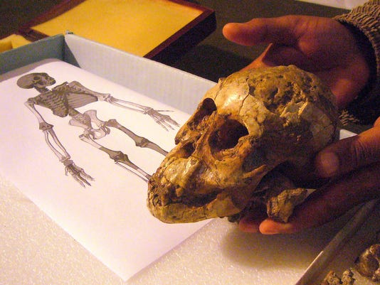 AFP ETHIOPIA-FOSSIL-DISCOVERY I HSC ETH -