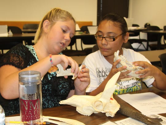 Students discussed the different tooth structures of animals at the Expanding Your Horizons Conference on Friday at NMSU Carlsbad.