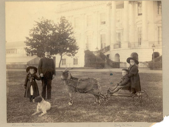 President Benjamin Harrison and family with family pet, Whiskers the goat.