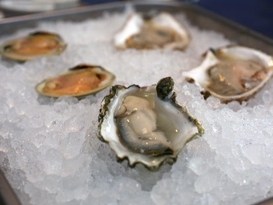 TJN 0626 DS Northeast oyster