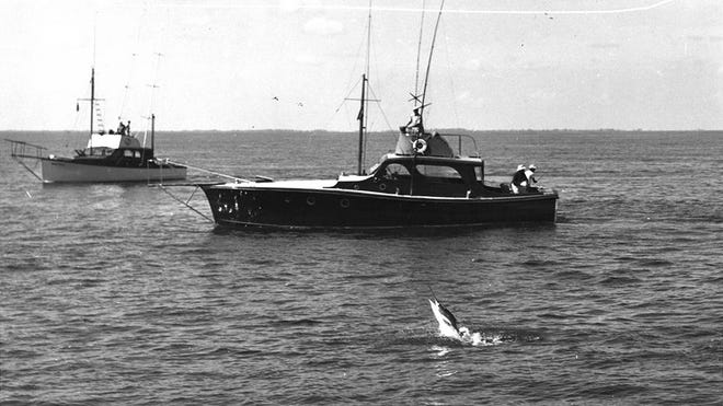 The 83rd Silver Sailfish Derby will be held Jan. 9 and 10. Known as 'The World's Oldest Sailfish Tournament,' 50 boats will head out of the Lake Worth Inlet, not unlike these vessels in this picture from the 1949 event, to vie for the victory.