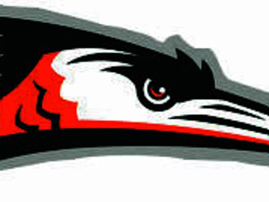 -Shorebirds logo.jpg_20150425.jpg