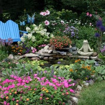 Voting runs until Wednesday for garden contest