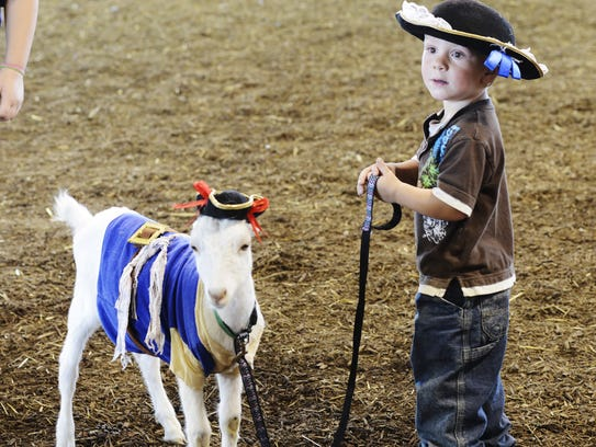 Lucas Brillhart, 2, of Green Springs and his goat,