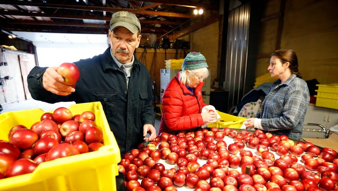 Rick Reisinger places a McIntosh apple into a crate to be given to the Food Bank of the Southern Tier, while his wife, Karen, and daughter Tammy Daniels, right, pack apples to be transported to Binghamton High School inside Reisinger's Apple Country packing facility in Watkins Glen Thursday.