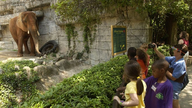 Kindergartners look at Joy the elephant at the Greenville Zoo on May 11, 2004. Joy, one of the zoo's most beloved attractions, died in 2014 at 44 years old.