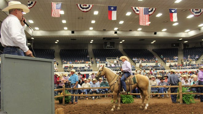 Becaco Son Down, a ranch horse from the Flowers Ranch, went for $17,500 at Saturday morning's sale at the Western Heritage Classic. Auctioneer Steve Friskup both entertained buyers and onlookers, and kept the price rising.