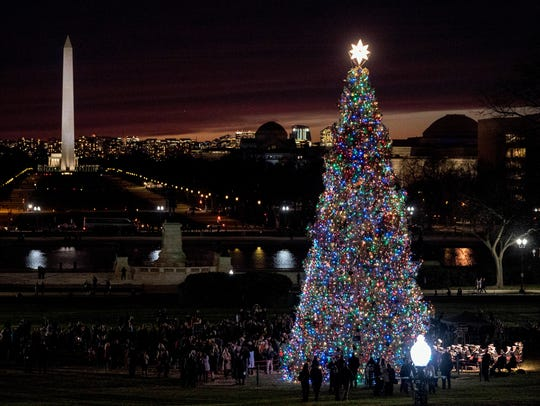 The 2017 Capitol Christmas Tree is lit on the West