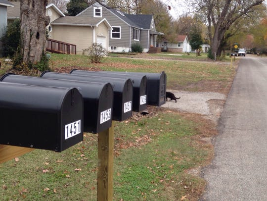 New curbside mailboxes have recently been put up on