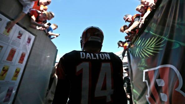 Bengals quarterback Andy Dalton steps through the tunnel