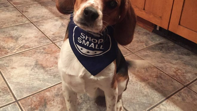 My beagle Wilbur Writer reminding you to Shop Small! photo by Caurie Putnam