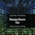 Managing Massive Data
