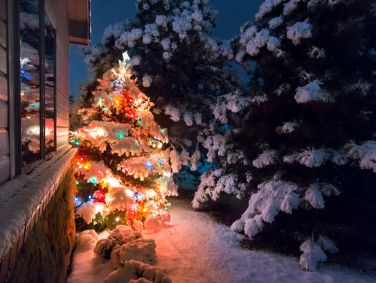 A snow-covered Christmas tree stands out brightly against