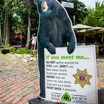 Aspen's Bear Aware education program includes this graphic on the Hyman Avenue pedestrian mall. State wildlife officials say education efforts have limited success and enforcement is a necessary evil.