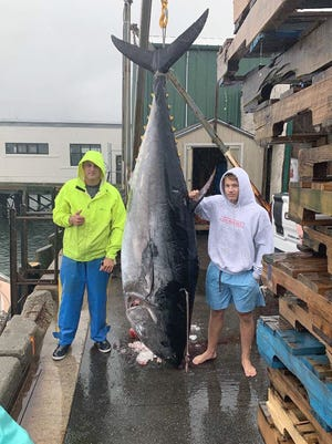 Max Bogdanovich, left, and Fitchburg resident Jake Hewitt pose with a 112-inch, 800-pound bluefin tuna they caught off the coast of Portland, Maine, on Saturday.